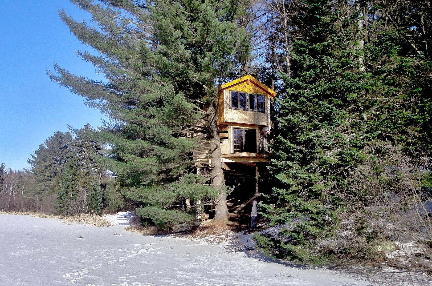 Vermont Tree Cabin Newport Treehouse
